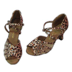 Women Dance Shoes Latin Ballroom Tango Salsa - #SHY19