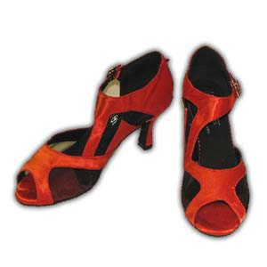 Women Dance Shoes Latin Ballroom Tango Salsa - #SHY28